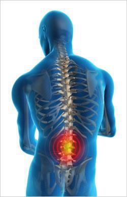 Savéria FUMIERE - L'ostéopathie
